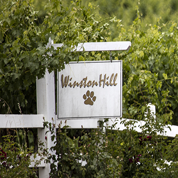 Sign post outside of Winston Hill Vineyard
